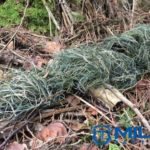 Miles-Ghillie-Rifle-Wrap-Woodland_2_450x306